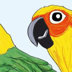 Journée au Parc des oiseaux