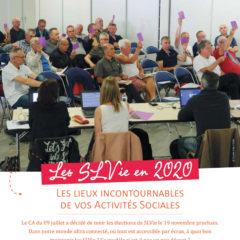 Dossier : Les SLVie en 2020