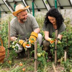 Jardiner en permaculture !